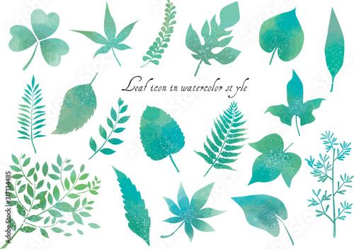 Leinwand Poster リーフ:葉っぱ 葉 植物 緑 新緑 ベクター 紅葉 シダ 挿絵 アイコン にじみ 水彩 かわいい 春