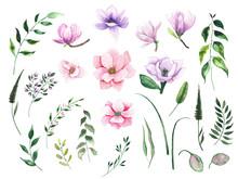 Watercolor Elements Clipart Wi...