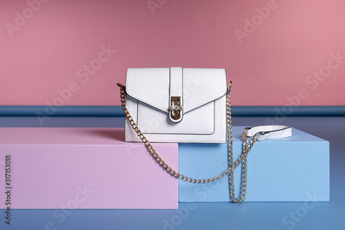 A small women's rectangular handbag on a chain strap stands on a pink, blue stand Canvas Print