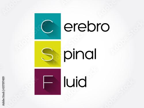 CSF - cerebrospinal fluid acronym, medical concept background Canvas Print