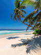 canvas print picture Tropical white sand beach with coco palms and the turquoise sea on Caribbean island.