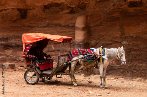 Cuadros en Lienzo  Carro beduino tirado por un caballo en Petra, Jordania