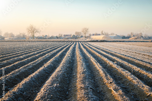 Winter farm field ready for new planting season Canvas