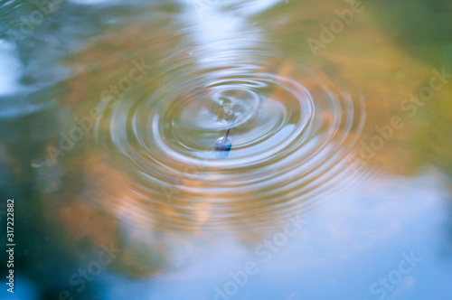 Tadpole driving into water and left circle of wave behind Fototapet