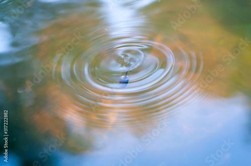Tadpole driving into water and left circle of wave behind Billede på lærred