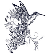 Elegant Vector Hummingbird With Flowers And Flourishes In Vintage Style