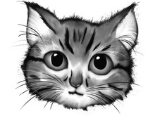 Illustration Of Kitten Face In...