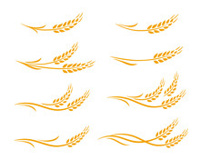 Wheat Ears And Oats Spikes Icons Set