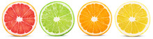 Fresh Orange, Lemon, Lime, Gra...