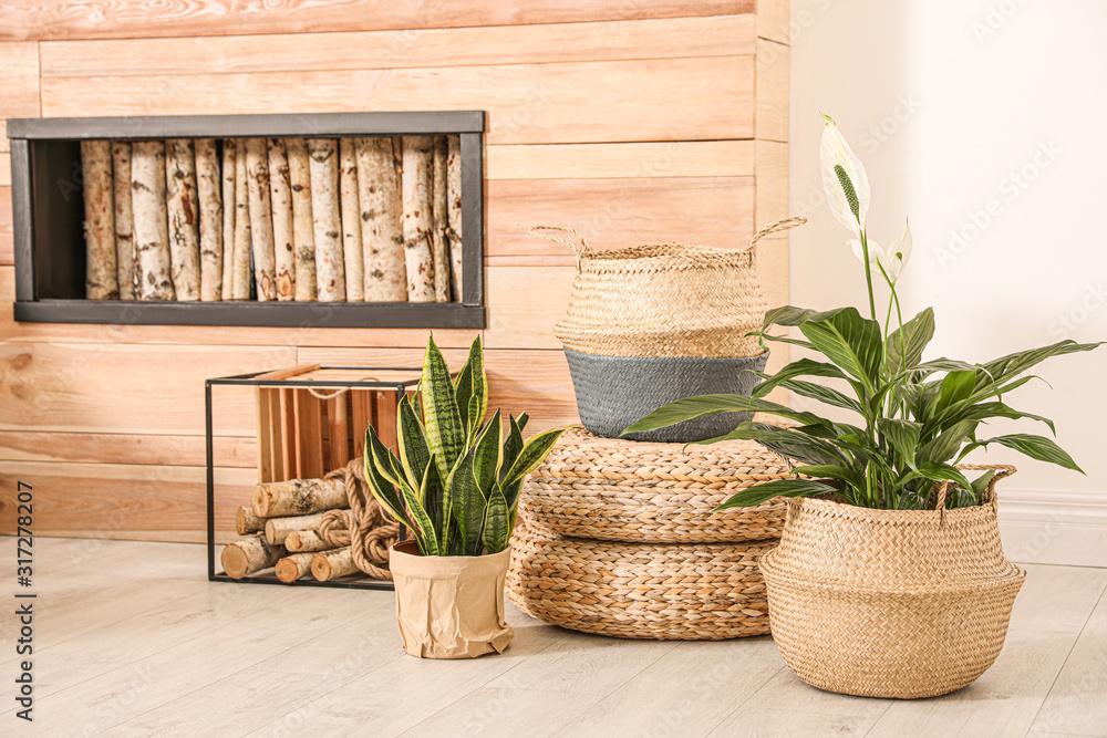 Fototapeta Stylish interior design with beautiful plants in pots