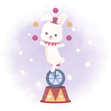 Cute Rabbit And Juggling Balls...
