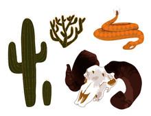 Desert Illustrations