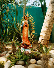 Virgin Of Guadalupe Statue In Rock Garden With Cactus Plants