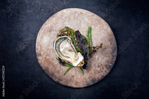 Fresh rock oyster offered as closeup opened with glasswort and algae as top view Canvas Print