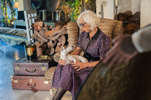 Pensive Gray Haired Actress In Elegant Dress With Obedient Small Jack Russell Terrier Dog Standing Beside Soft Box And Looking At Camera During Break In Work Against Blurred Interior Of Cozy Contemporary Studio