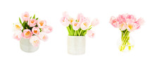 Set Of Three Pink Tulips Bouquets In Flower Vase Isolated Over White Background