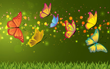 Colorful Butterfly With Colorful Abstract Background