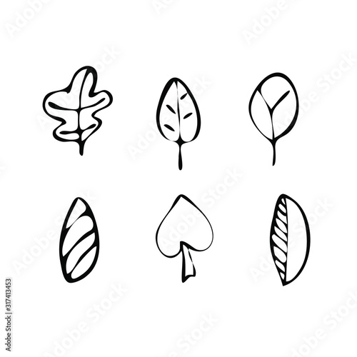 Set of leaves vector illustration for the design. Wall mural