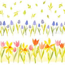 Pink Tulips. Spring Flowers. N...