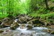 Wildromantischer Gebirgsfluss nahe Oberstdorf bei Gerstruben