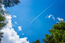 Airplane Trail Against A Bright Blue Sky With Few Clouds And Leaves On The Side