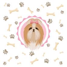Yorkshire Terrier Illustration...