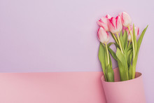 Top View Of Tulips Wrapped In Pink Paper Swirl On Violet Background