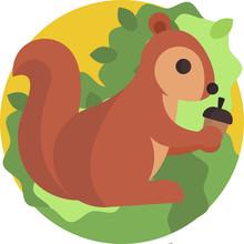 Squirrel With Acorn Illustration Vector