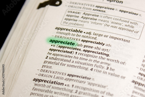 Appreciate word or phrase in a dictionary. Wallpaper Mural