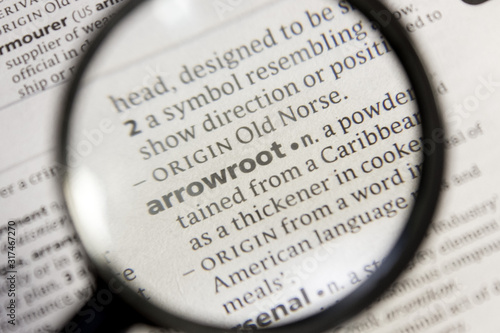 Arrowroot word or phrase in a dictionary. Canvas Print