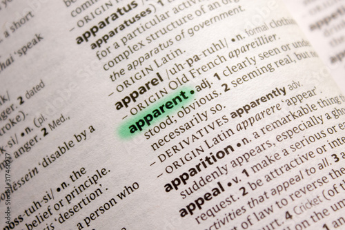 Apparent word or phrase in a dictionary. Canvas Print
