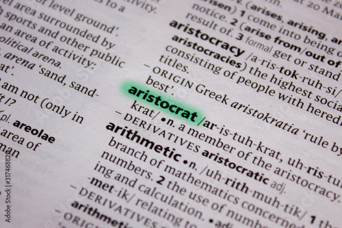 Aristocrat word or phrase in a dictionary. Wallpaper Mural
