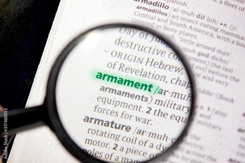 Armament word or phrase in a dictionary. Wallpaper Mural