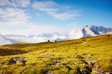 Location place National Park Tre Cime di Lavaredo, Dolomiti alp.