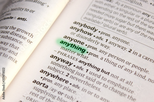 Anything word or phrase in a dictionary. Canvas Print