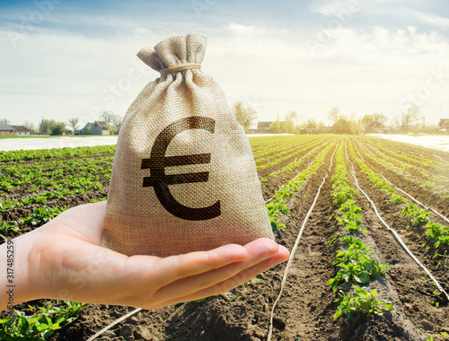 Photo Money bag on the background of agricultural crops in the hand of the farmer