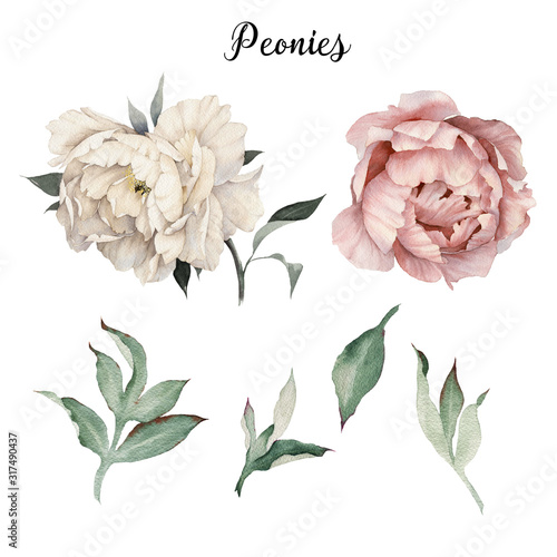 Fotografía Peonies and leaves, watercolor, can be used as greeting card, invitation card fo