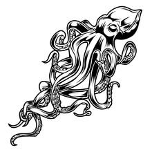 Octopus Drawing Black & White  Vector Illustrtor 6