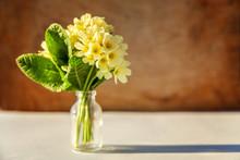 Easter Concept. Bouquet Of Pri...