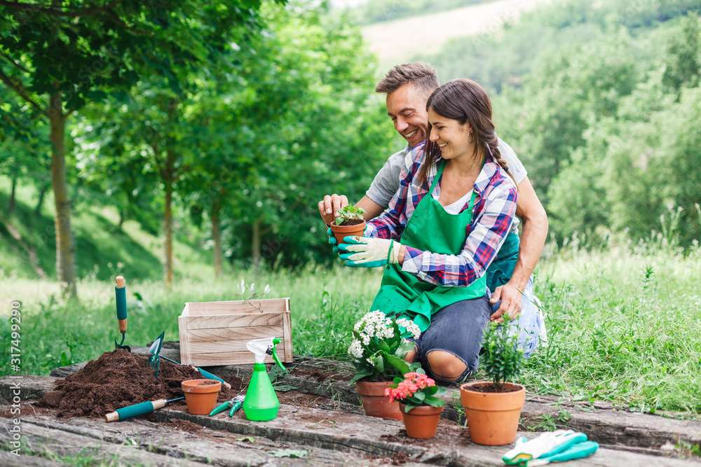 Fototapeta Young loving couple have fun with gardening work on a wooden floor during spring day - Millennial are dressed with green aprons