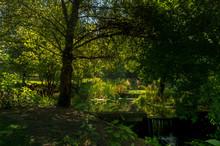 Lake Inside Lavandeira Park, B...