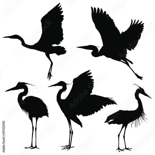 Obraz na płótnie Heron silhouette set. Vector illustration