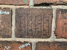 Brick Wall With Birch