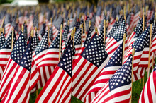 Field Of American Flags On Mem...