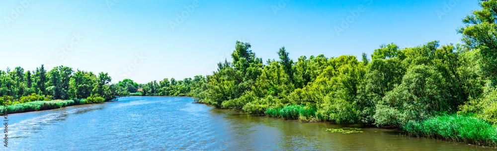 Fototapeta river Amer. National park Hollandse Biesbosch. Drimmelen, The Netherlands