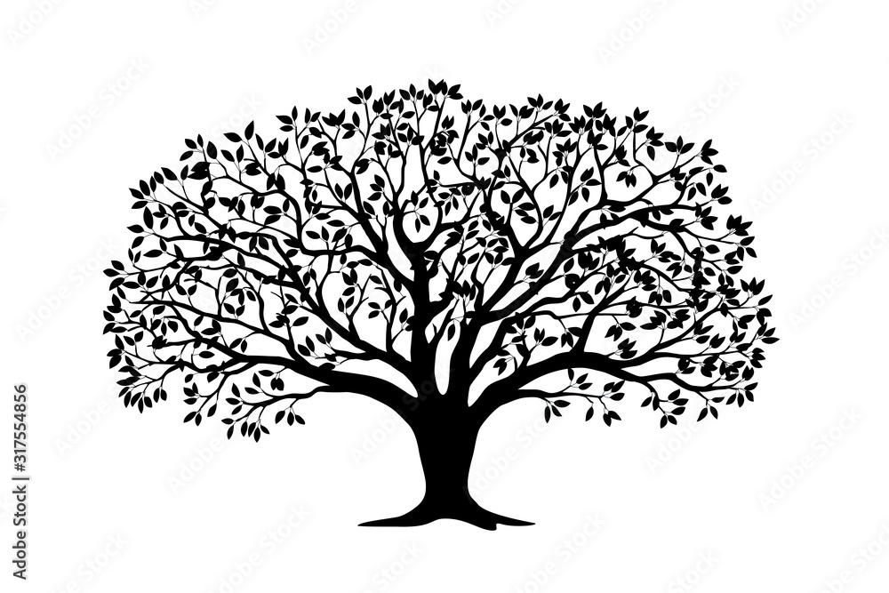 Fototapeta Black silhouette apple tree with leaves