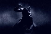 Thai Boxer In The Rain And Und...