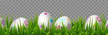 Vector Easter Eggs In Green Gr...