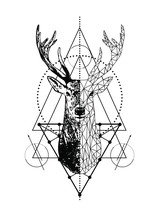 Vector Poligonal Animal Emblem  Geometric Deer Tattoo Art Style Design Isolated On White Background.Low Poly Head With Triangle.Tribal Boho Line Art Animal Drawing.Stag Head And Antlers.T Shirt Print
