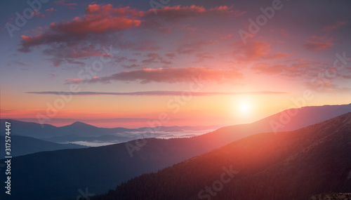 Panoramic landscape of colorful sunrise in the mountains. View on foggy hills covered by forest. Concept of the awakening wildlife. #317574447